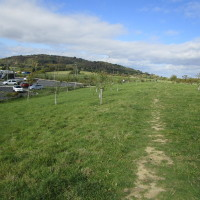 M5 Services Gloucester, Gloucestershire - Dog walks in Gloucestershire