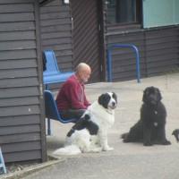 Dunes, beach and doggie delight, Devon - Devon dog walking places.JPG