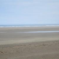 Saunton Sands dog-friendly beach, Devon - Devon dog-friendly beach.JPG