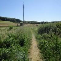 M40 Chilterns dog walk and dog-friendly pub, Buckinghamshire - Chilterns dog walk with dog-friendly pub