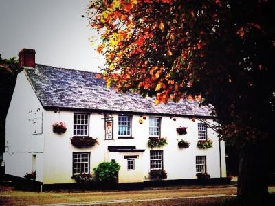 A388 Dog-friendly pub near Launceston, Cornwall - Driving with Dogs