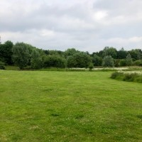 Easy access dog walk at MOTO services M4 eastbound, Berkshire - Berkshire dog walk