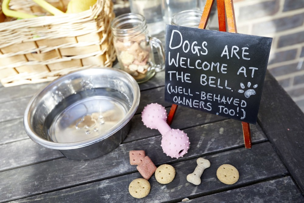 M23 Junction 9 Outwood dog walks and dog-friendly pub, Surrey - dog-friendly surrey.jpg
