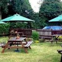 A10 dog friendly pub with dog walk near Hertford, Hertfordshire - dog-friendly pubs and dog walks Hertfordshire.jpg