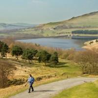 A635 Easy dog walk by a reservoir, Derbyshire - dovestone-dog-walk.jpg