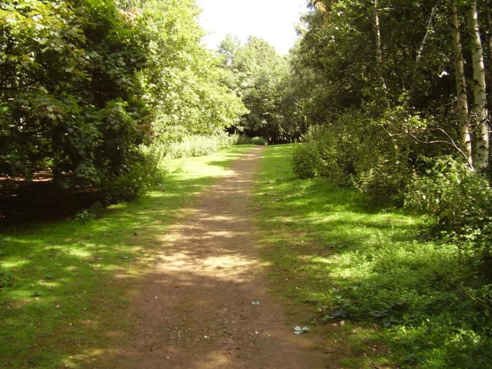 Northampton Hill Fort dog walk, Northamptonshire - Dog walks in Northamptonshire