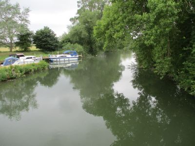 Hidden dog-friendly pub and dog walk by the Thames, Oxfordshire - Driving with Dogs