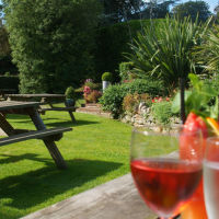 A380 dog-friendly pub and dog walk near Torbay, Devon - Devon dog-friendly pubs.jpg