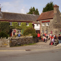 M48 dog-friendly pub and dog walk, Gwent - 2