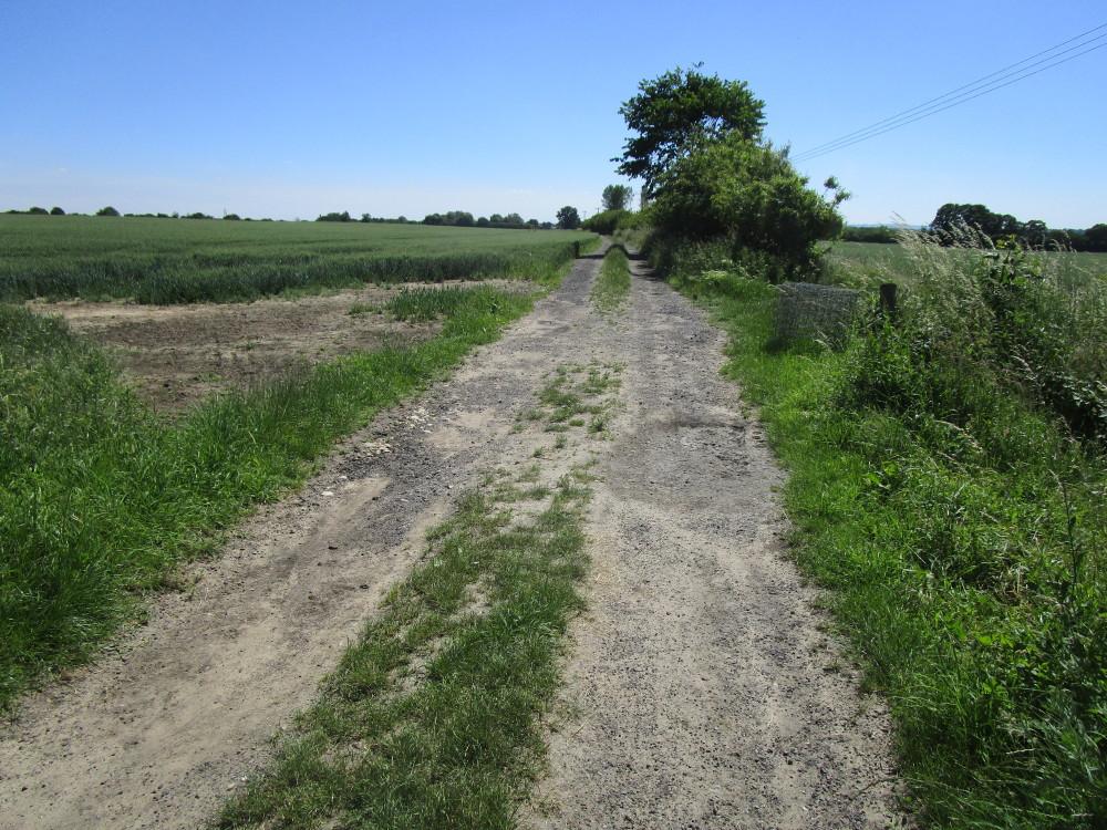 A420 dog walk and dog-friendly pub west of Oxford, Oxfordshire - Dog walks in Oxfordshire