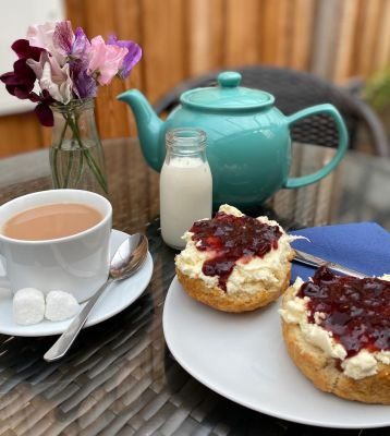 Dog-friendly cafe and camping near Honiton, Devon - Driving with Dogs