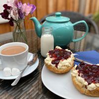 Dog-friendly cafe and camping near Honiton, Devon - Honiton dog-friendly cafe on the A35.jpg