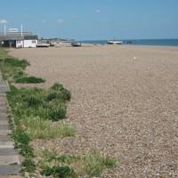 Aldeburgh dog friendly beach, Suffolk - Dog walks in Suffolk
