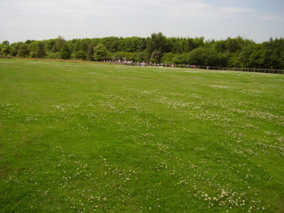 Heanor dog walks near Eastwood, Derbyshire - Driving with Dogs