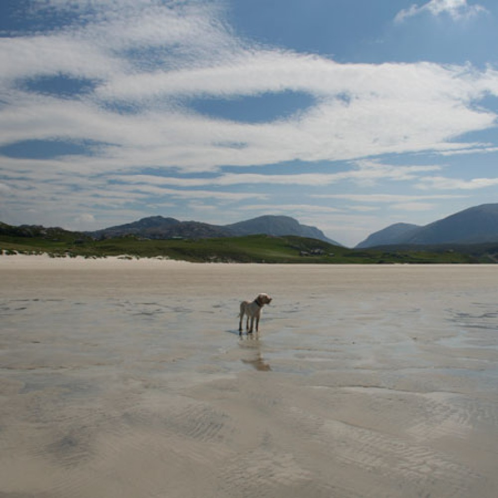 Traigh Uige dog-friendly beach on the Isle of Lewis, Scotland - Dog walks in Scotland