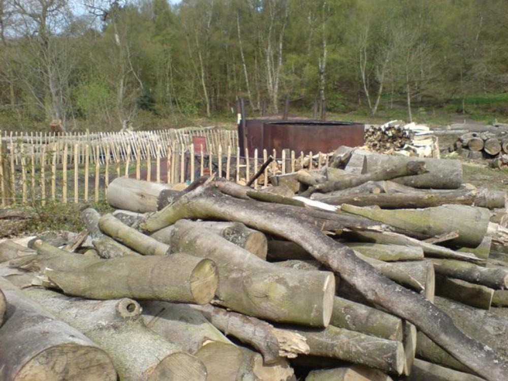 Out Woods dog walk near Loughborough, Leicestershire - Dog walks in Leicestershire