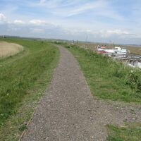 Dog walk by the sea and all-day breakfast, Suffolk - IMG_6079.JPG