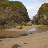 Dog-friendly beach and walkies, Cornwall - Dog walks in Cornwall