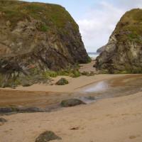 Dog-friendly beach and walkies, Cornwall - Dog walks in Cornwall