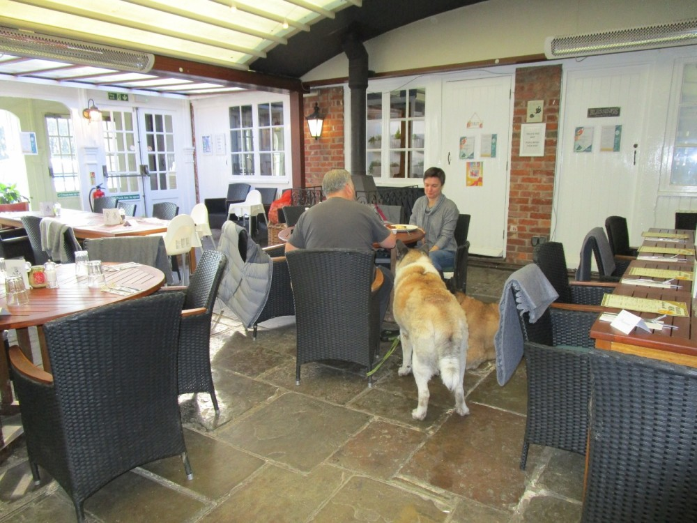 A227 Top quality poochie pub with walks, Kent - Kent dog-friendly pubs and dog walks.JPG