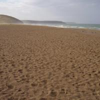 Dog walk and dog-friendly beach near Porthleven, Cornwall - Dog walks in Cornwall