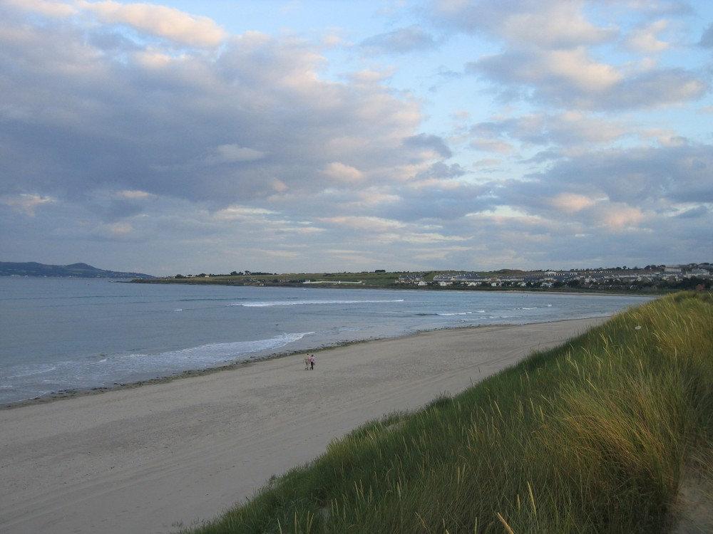 Dog-friendly beach near Dublin, RoI - Ireland dog-friendly beach