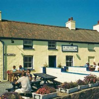 Angle dog-friendly pub and dog walk, Wales - Dog walks in Wales