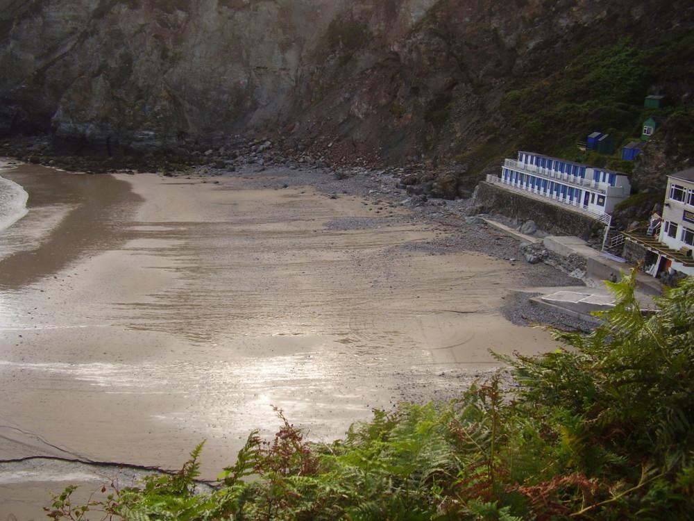 Dog-friendly beach with B&B, pub and dog walks, Cornwall - Dog walks in Cornwall