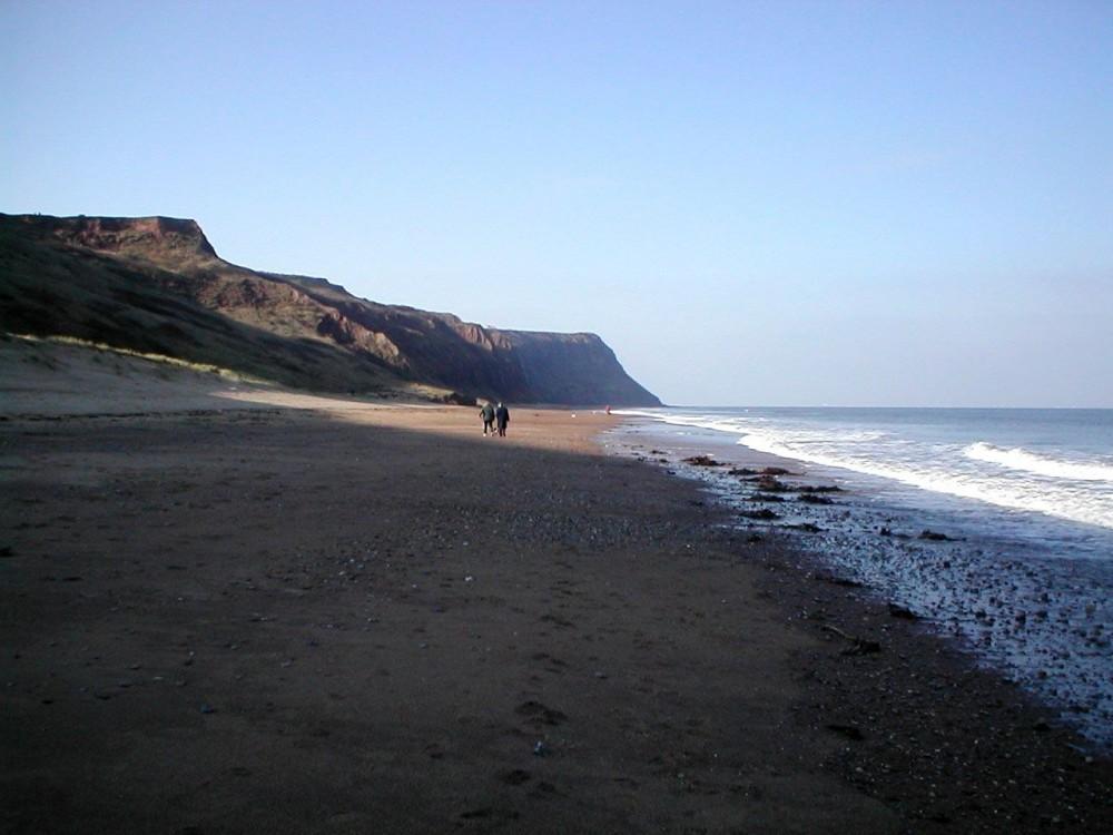 Skinningrove dog-friendly beach, Yorkshire - Dog walks in Yorkshire