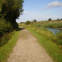 Cotgrave Country Park dog walk, Nottinghamshire - Dog walks in Nottinghamshire
