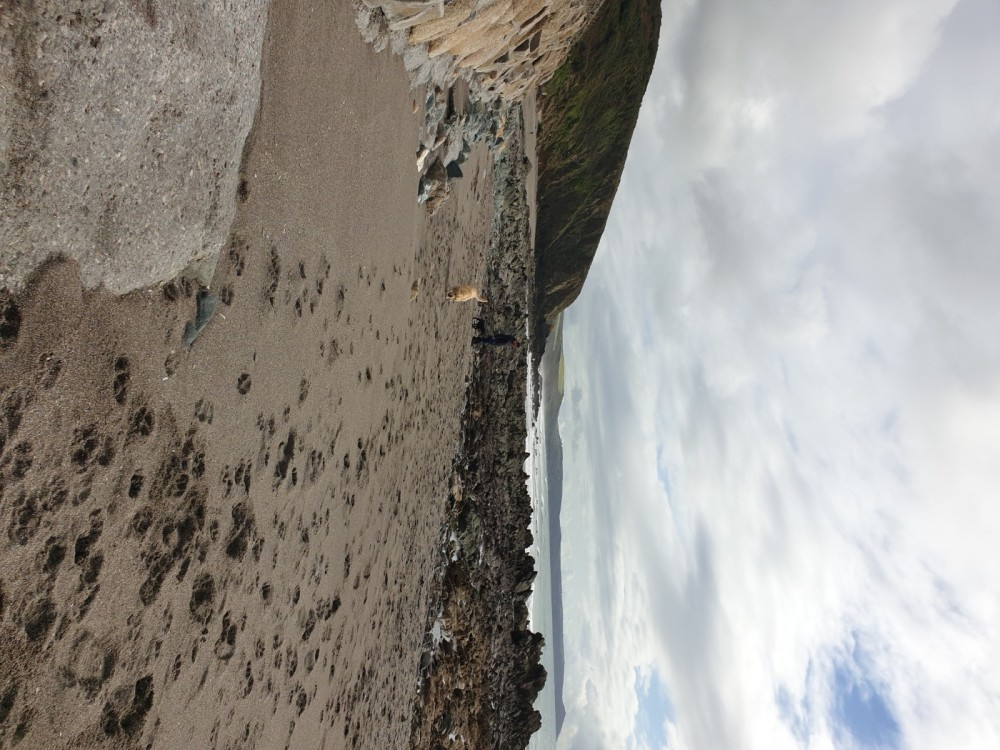 Portwrinkle Beach - dog-friendly, Cornwall - 20191015_120946.jpg