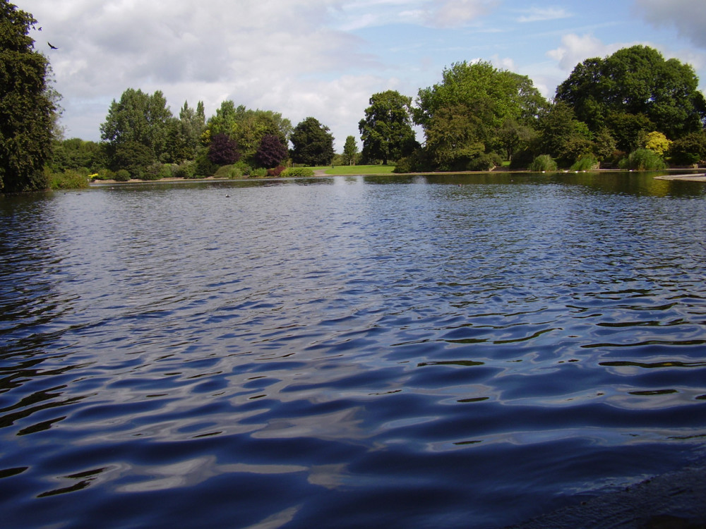 Alvaston Park local dog walk, Derbyshire - Dog walks in Derbyshire