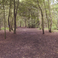Allestree dog walks, Derbyshire - Dog walks in Derbyshire