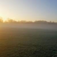 Country park dog walks near Bedford, Bedfordshire - 20191204_083335.jpg