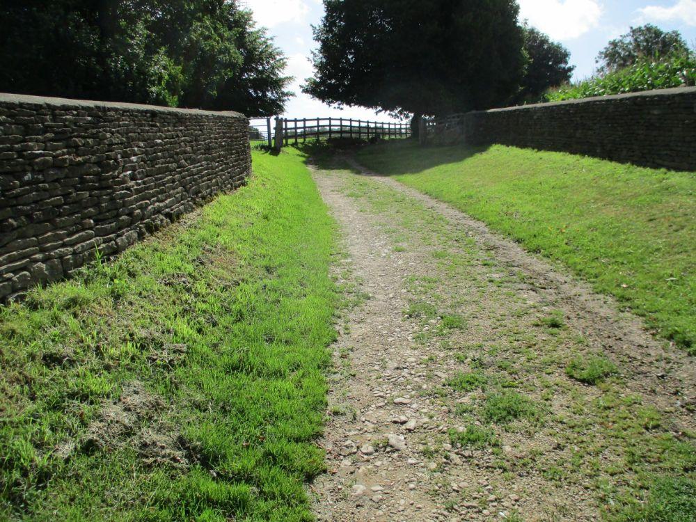 A417 dog friendly pub and dog walk near Cirencester, Gloucestershire - Dog walk and dog-friendly pub Gloucestershire.JPG