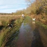 Wander for hours, a different route every day!, Leicestershire - 113349D7-CD9A-4C3B-80F3-9B3A36CC9391.jpeg