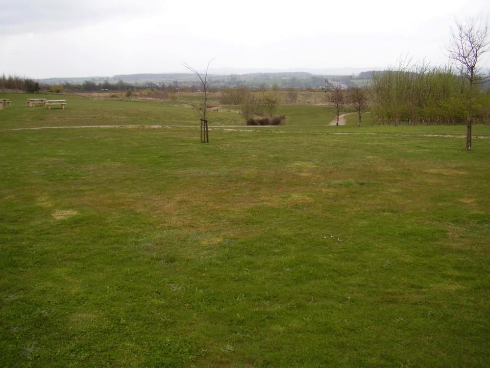 M1 junction 23A dog walk at Donington Park Services, Leicestershire - Dog walks in Leicestershire