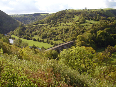Monsal Dale dog walk and dog-friendly pub, Derbyshire - Driving with Dogs