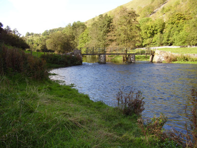 Doggie swimming, walk and dog-friendly pub, Derbyshire - Driving with Dogs