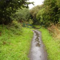 Southwell Trail dog walk, Nottinghamshire - Dog walks in Nottinghamshire