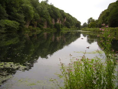 Creswell Crags dog walk, Nottinghamshire - Driving with Dogs