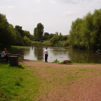A60 Country Park dog walk near Mansfield, Nottinghamshire - Dog walks in Nottinghamshire