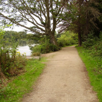 Langold Country Park dog walks, Nottinghamshire - Dog walks in Nottinghamshire
