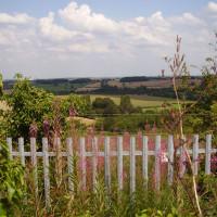 A42 Junction 14 dog walk and dog-friendly pub, Derbyshire - Dog walks in Derbyshire
