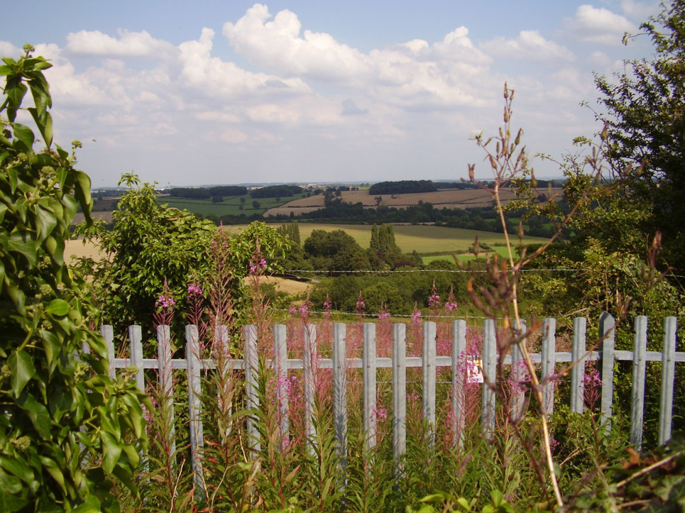 A42 Junction 14 dog walk and dog-friendly pub, Derbyshire - Dog walks in Derbyshire