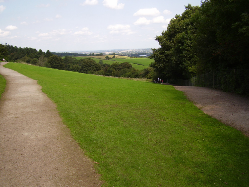 Hartshill Hayes Country Park dog walk, Warwickshire - Dog walks in Warwickshire