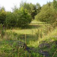 Claybrookes Marsh dog walk in Coventry, West Midlands - Dog walks in the West Midlands