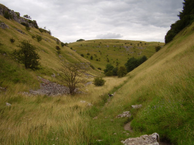 Scenic dale dog walk with two dog-friendly pubs, Derbyshire - Driving with Dogs