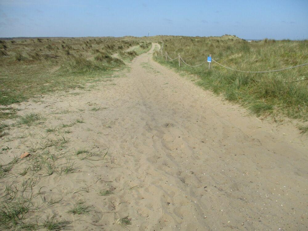 Winterton on Sea dog-friendly beach, Norfolk - IMG_5190.JPG