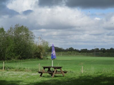 A134 dog-friendly pub with large garden and hard surface walk, Suffolk - Driving with Dogs